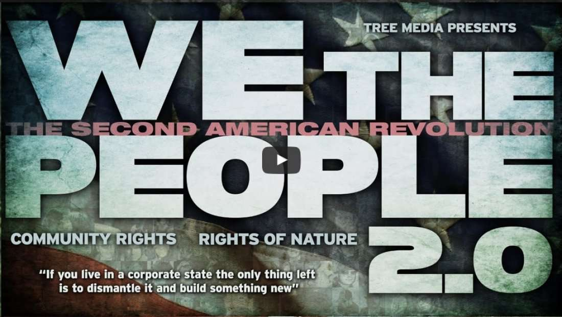 Defend Direct Democracy Vote NO on 71 & watch We the People 2.0