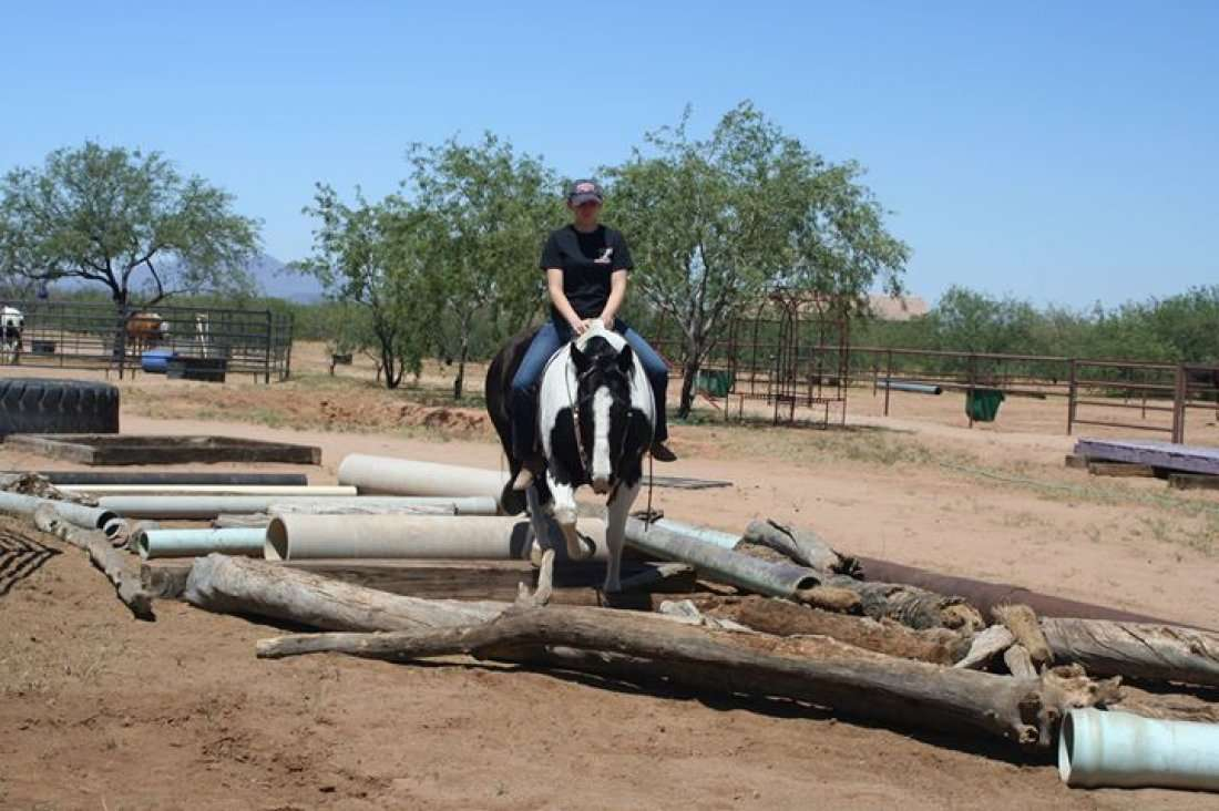 Extreme Trail Horse Competition At Tucson Equestrian