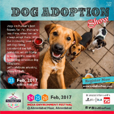 DOG Adoption Show at IEF17