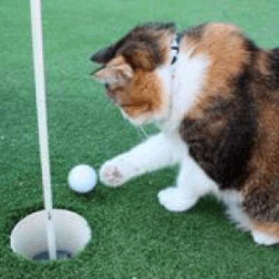 HSKLs 19th Annual Golf Tounament