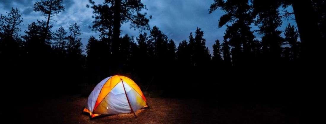 Jungle Camping with Midnight Safari - Munnar Mountains