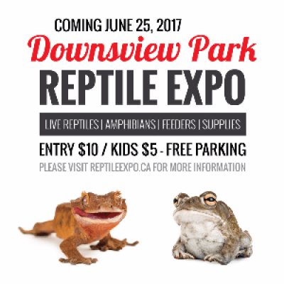 Downsview Park Reptile Expo