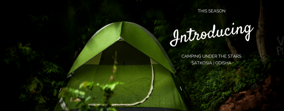 Camping Under The Stars - Satkosia Tiger Reserve