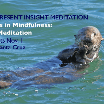 Finding Kindness in Mindfulness the Compassionate Side of Meditation - A 5-week Class