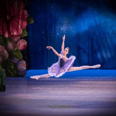 Phoenxi Ballet Live in Sedona with The Nutcracker