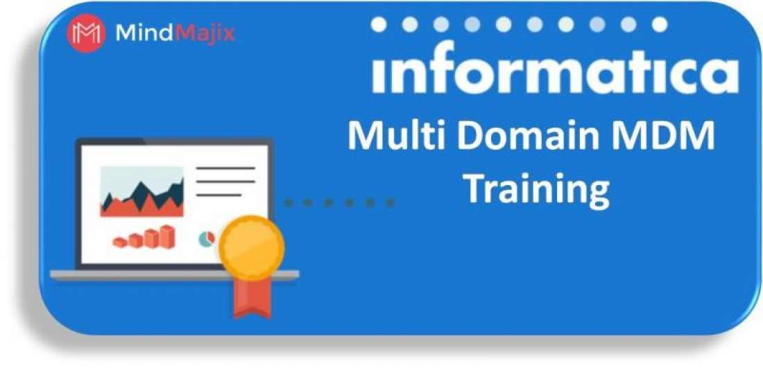 Learn Informatica Multi Domain MDM Training By Experts