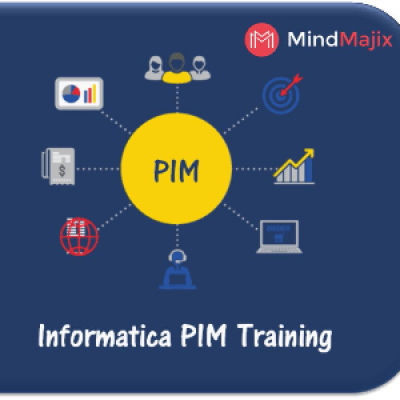 Learn Informatica PIM Training By Experts