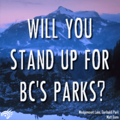 Feb 3 Stand Up for Parks Day of Action