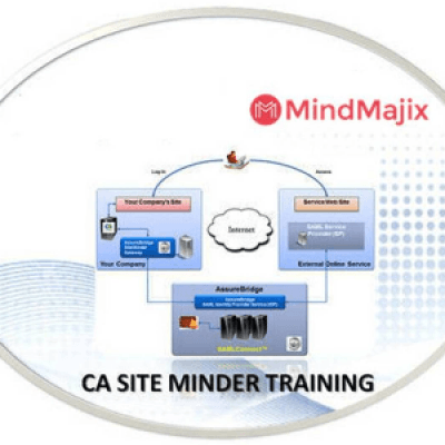 CA SiteMinder Online Training Classes by Experts