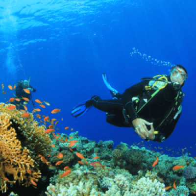 Bali and Gili Islands- Scuba diving special