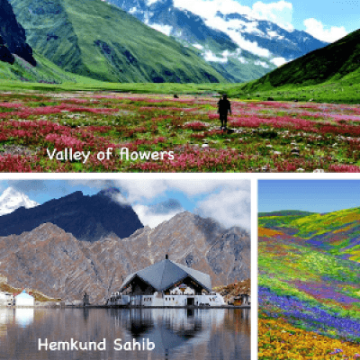 Valley of Flowers Trek with Hemkhund and Badrinath