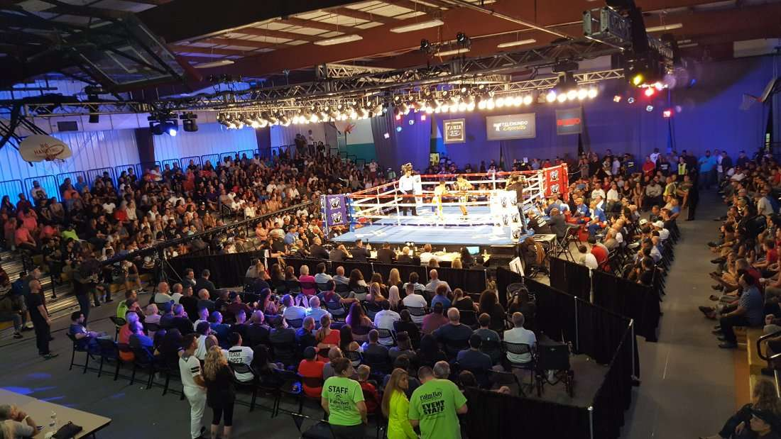 SATURDAY NIGHT FIGHTS - LIVE CHAMPIONSHIP BOXING