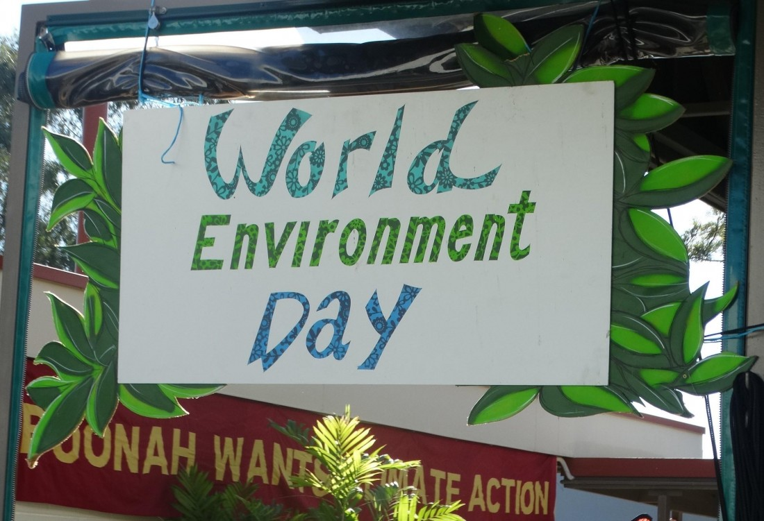 Boonah World Environment Day Festival