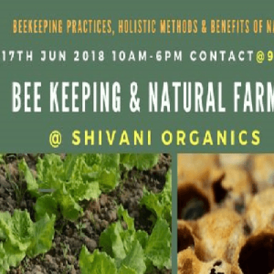 BEE KEEPING &amp NATURAL FARMING SESSION