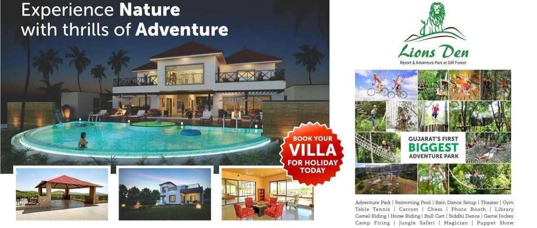 Summer Vacation at Lions Den Resort
