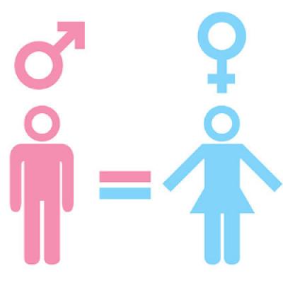 Gender Diversity &amp Inclusion