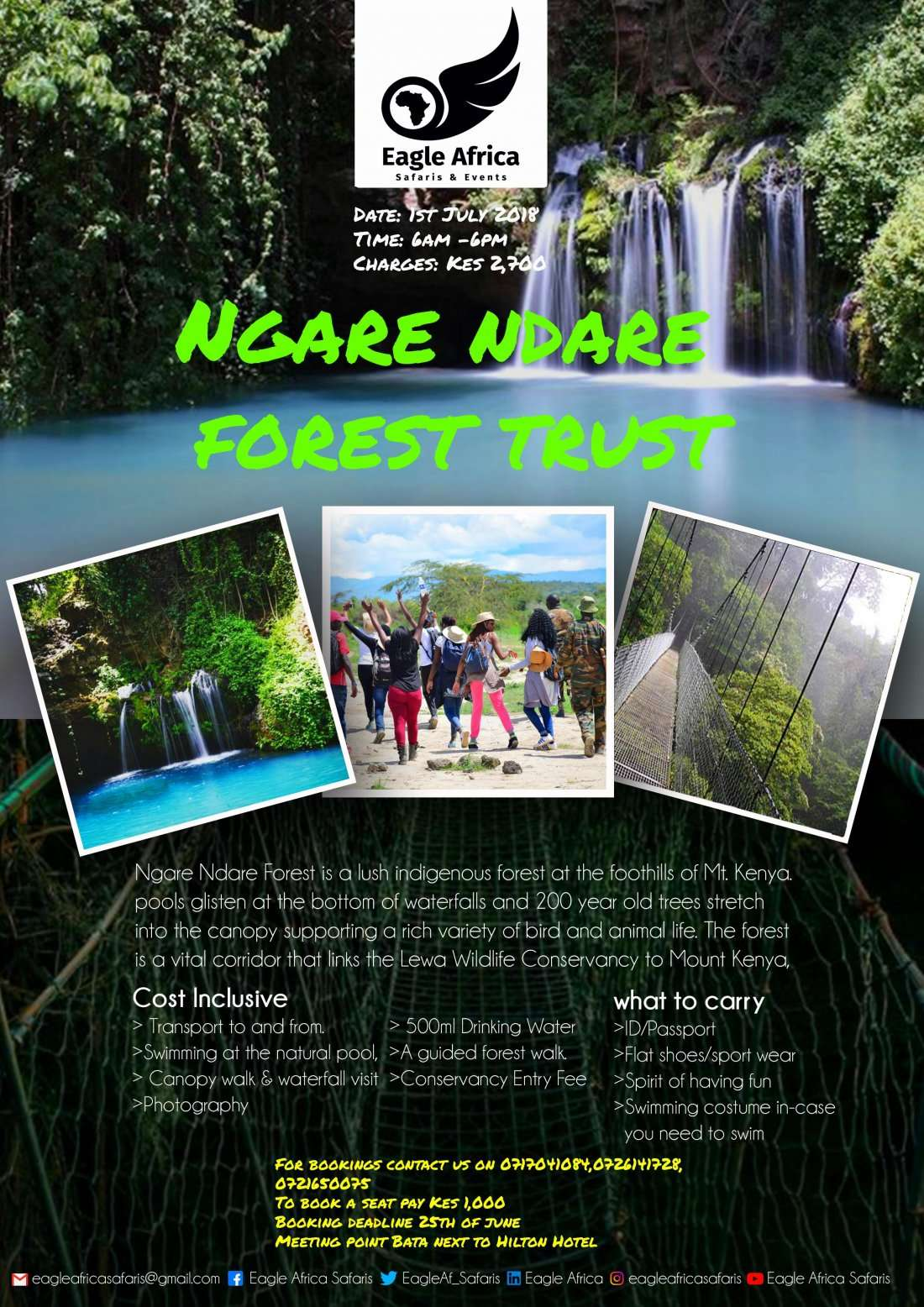 NGARE NDARE FOREST TRUST (experience canopy walk & natura blue pool)