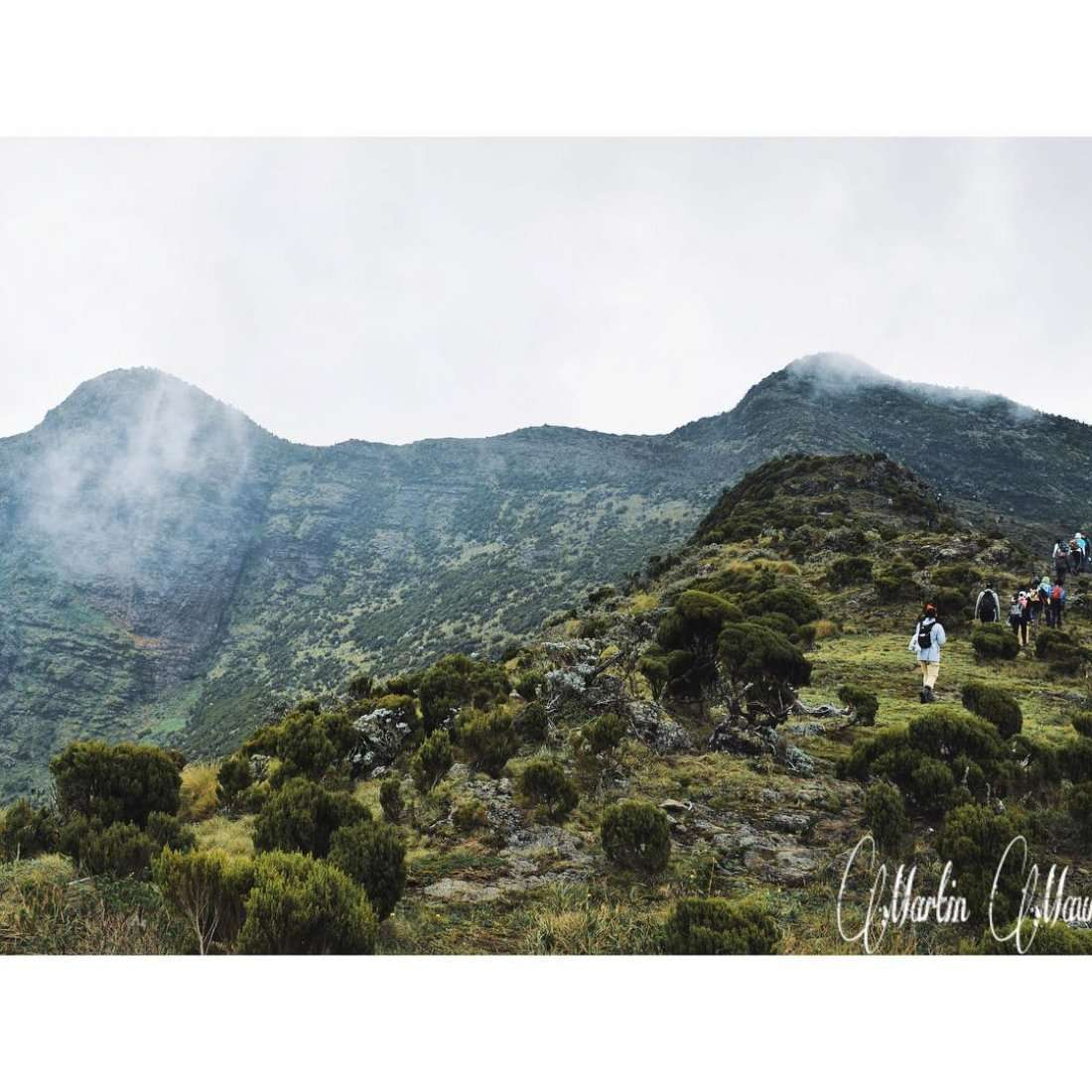 Aberdare Elephant hill Mt Kenya preparation hike