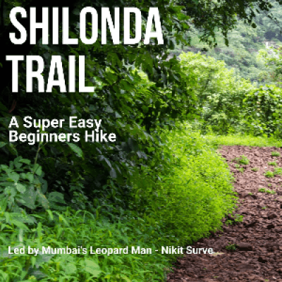 Shilonda Trail - A Super Easy Hike