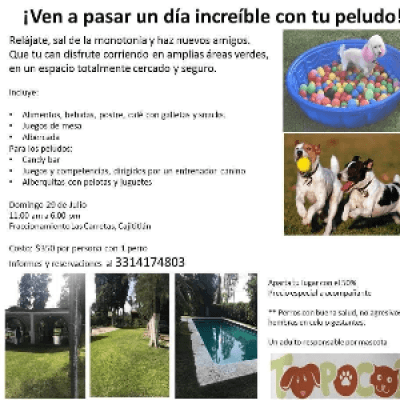 DIA DE CAMPO PERRUNO