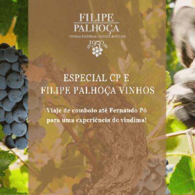 Especial CP e Filipe Palhoa Vinhos