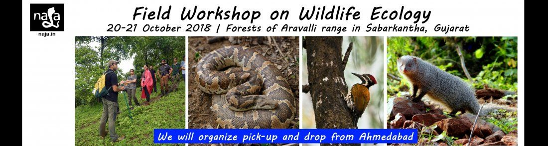 Field Workshop on Wildlife Ecology