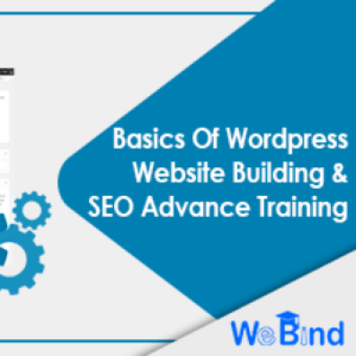 Wordpress &amp SEO Advance Training