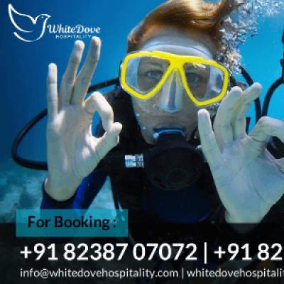 Scuba diving &amp Island Tour by White Dove