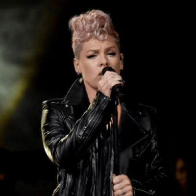 Pink at Little Caesars Arena Detroit MI