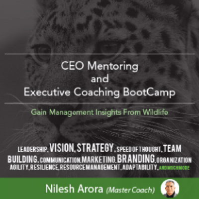 CEO MENTORING &amp EXECUTIVE COACHING BOOT CAMP