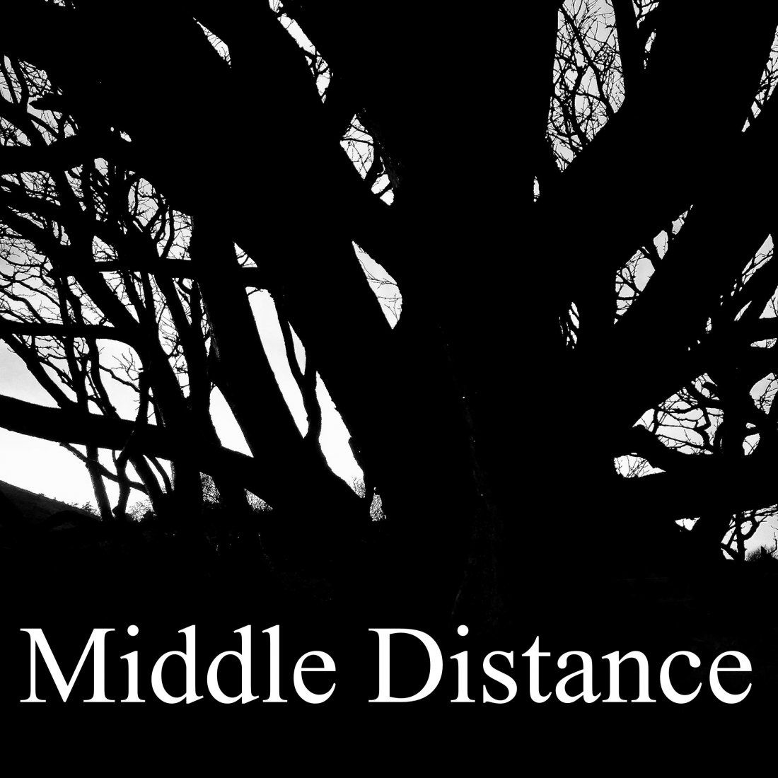 Middle Distance - launch party