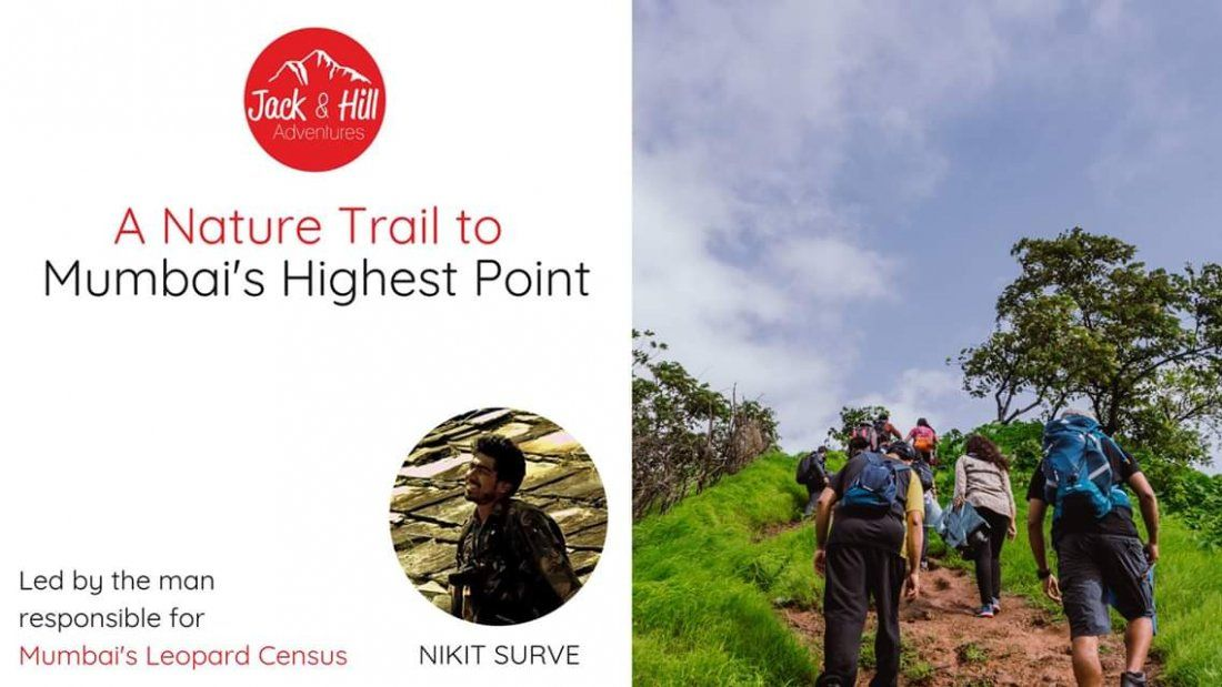 A Nature Trail To Mumbais Highest Point