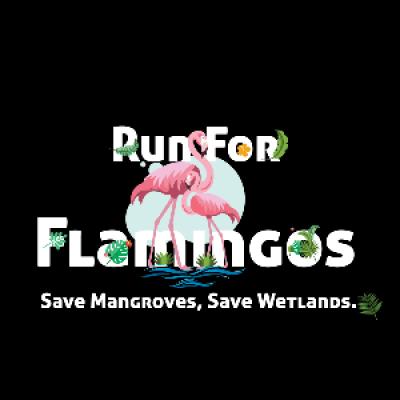 Run for Flamingos
