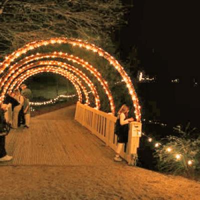 Hopeland Gardens Christmas Lights.Christmas In Hopelands At Hopelands Gardens Aiken