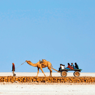 New Year Trip to Rann of Kutch
