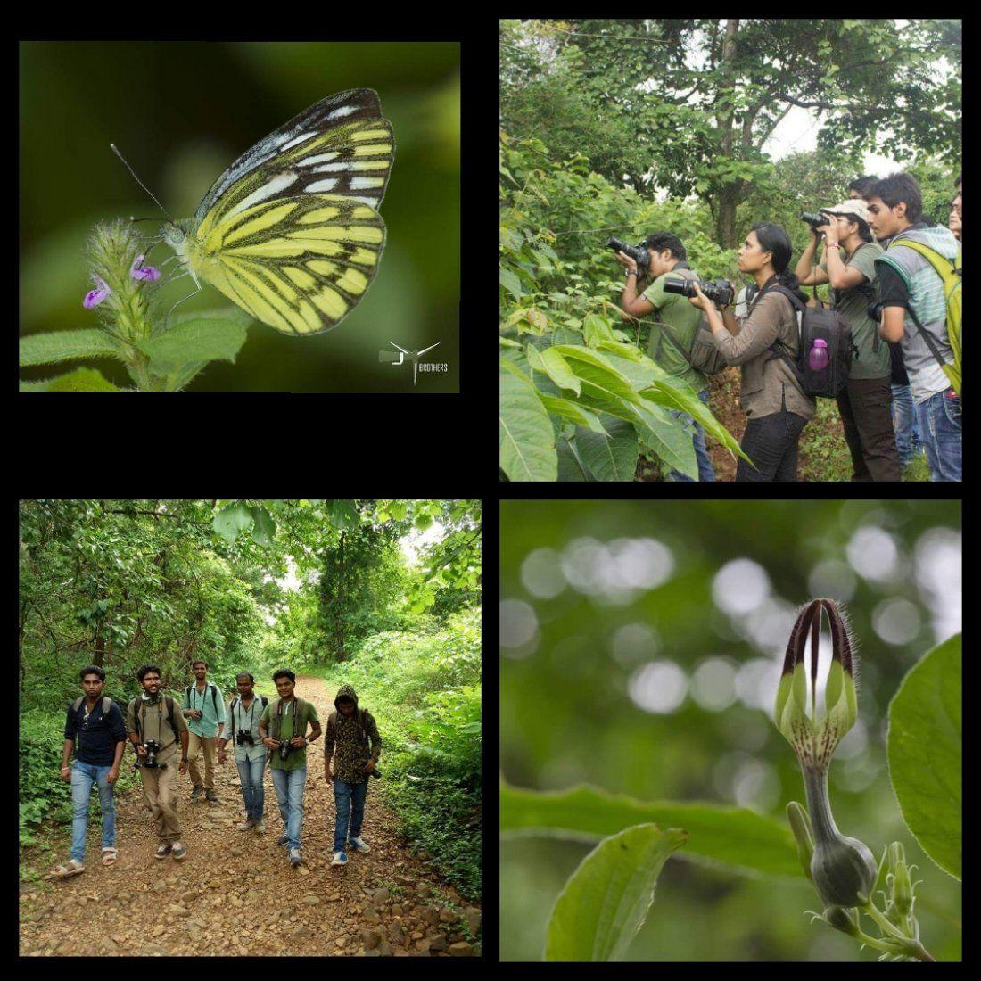 Nature trail and photowalk at Shilonda Sanjay Gandhi National Park