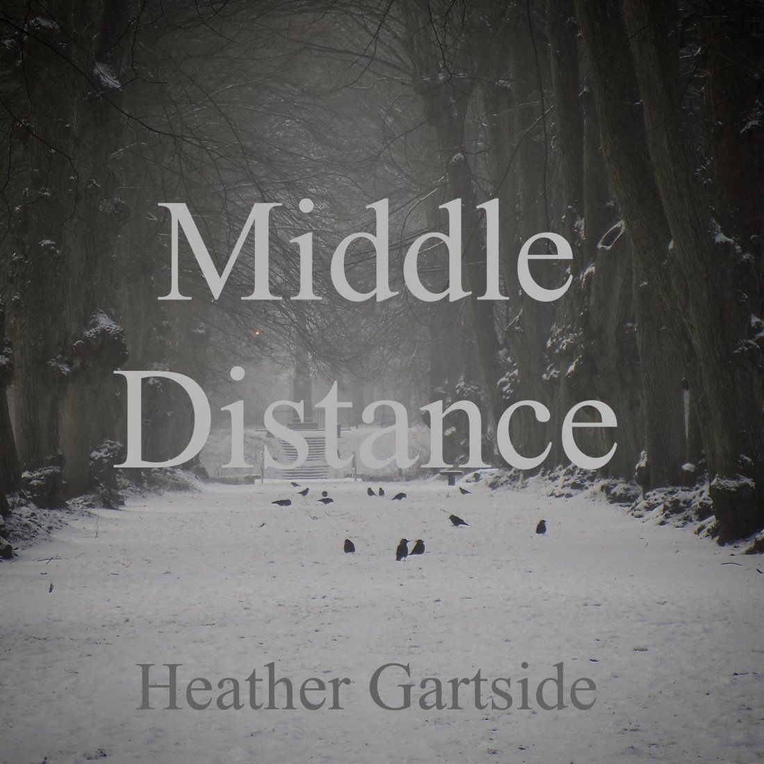 Middle Distance In Midwinter