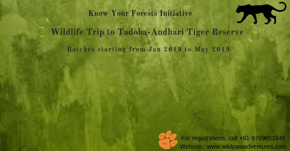 Know Your Forests - Wildlife Tour to Tadoba - Andhari Tiger Reserve