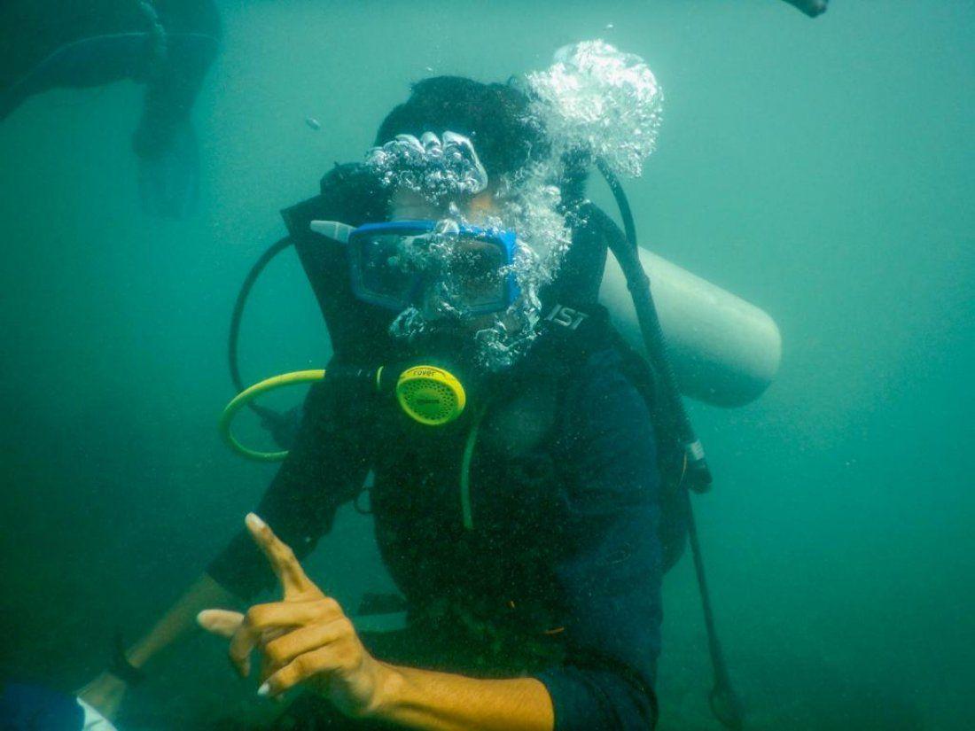 Scuba diving - The Underwater World