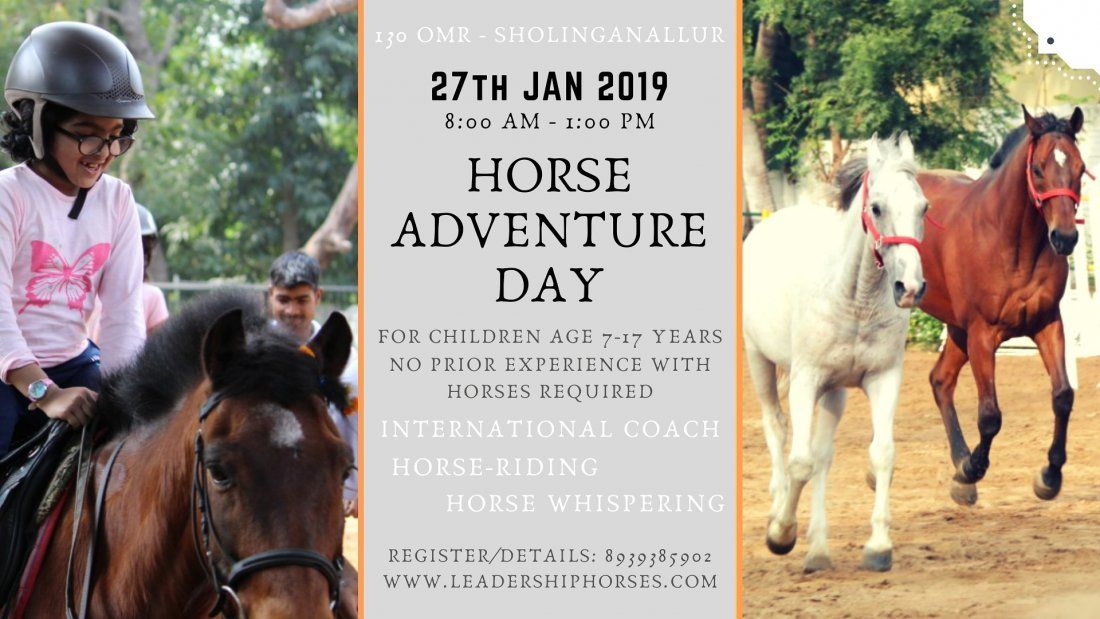 Horse Adventure Day for Children (age 7-17 years)