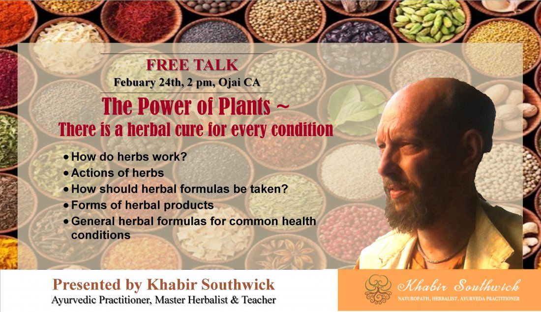 The power of plants There is an herbal cure for every health condition.