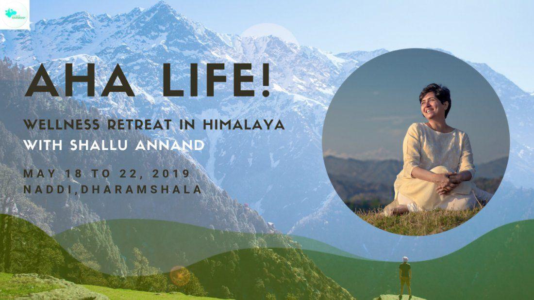 Aha Life Wellness Retreat in Himalaya