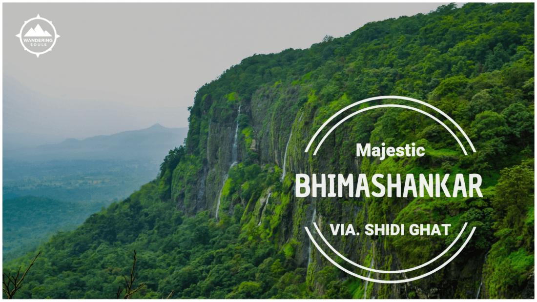 Trek to Bhimashankar via. Shidi Ghat