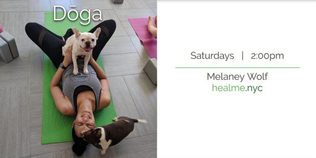 Doga (Yoga with your Dog)