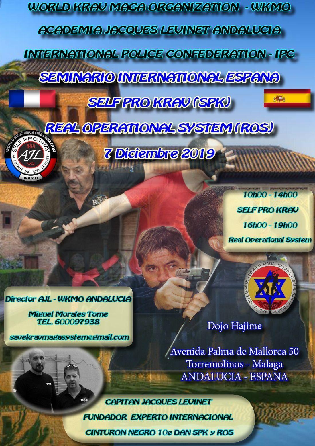 SEMINARIO INTERNACIONAL KRAVMAGA SPK EN MALAGA (ESPANA)