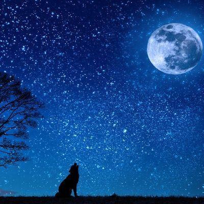 Spln mesiaca na cintorne