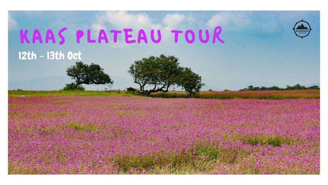 Kaas Plateau Tour