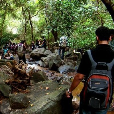 Trail to BNHS - Goregaon