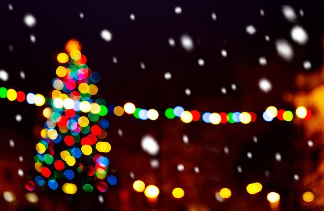 San Diego Holiday Lights tour