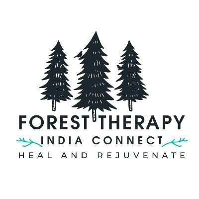 Forest Therapy-  An Immersive Forest Bathing Experience